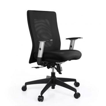 Kancelářská židle ALBA Lexa s područkami černá