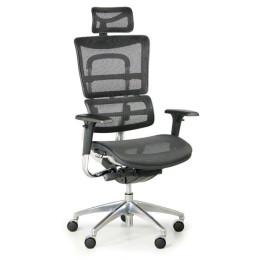Kancelářská židle WINSTON NET s područkami nosnost 150 kg